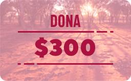 $ 300