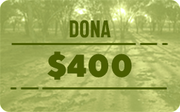 $ 400