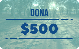 $ 500