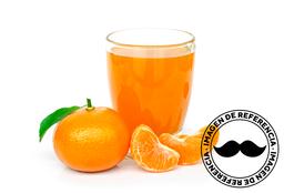 Jugo de Mandarina 325 ml