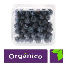 Blueberry Orgánicas 170 g