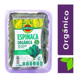 Espinaca Orgánica Campo Vivo 180 g