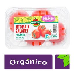 Jitomate Saladet Orgánico Campo Vivo 450 g