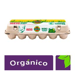 Campo Vivo Huevo Blanco Orgánico