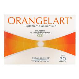 Suplemento Alimenticio Orangel Art 30 Cápsulas