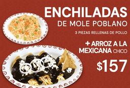 Enchiladas de Mole + Arroz a la Mexicana