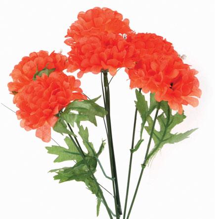 Bush Chico Cempasúchil X6 36 cm Naranja