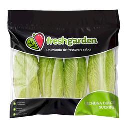Lechuga Dulce Fresh Garden 4 U
