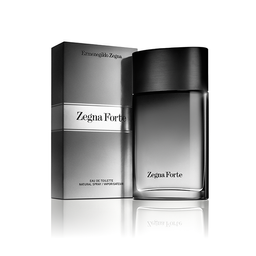 Ermenegildo Zegna Forte 100 mL