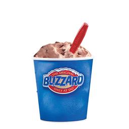 Blizzard® Mini