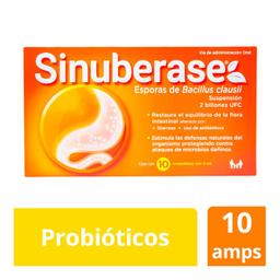 Sinuberase Suspensión 10 Ampolletas Bacillus clausii 2 g