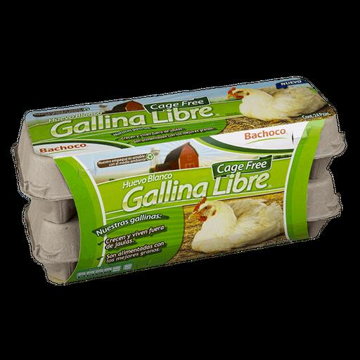 Gallina Real huevo blancos veggetarian