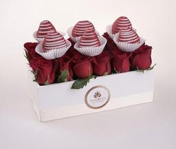 Negrón Ramo Florencia Valentín