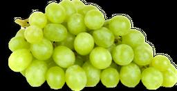 Uva blanca sin semilla