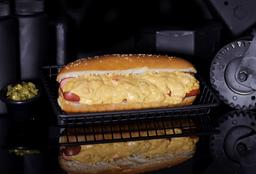 Hot Dog Salsa Especial