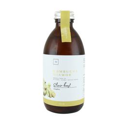 Kombucha Elixir Boost
