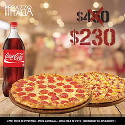 2 PIZZAS GRANDES + REFRESCO