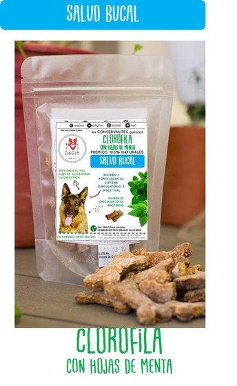 Dogift Snack Para Perro Salud Bucal 100 g