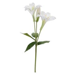 Flor Alcatraz 2 Flores, 1 Botón 45 cm Blanco/Verde
