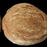 Pan de Masa Madre 550 g