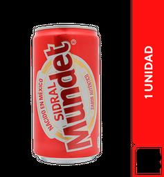 Sidral Mundet 350 ml