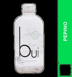 Agua Bui Pepino 290 ml
