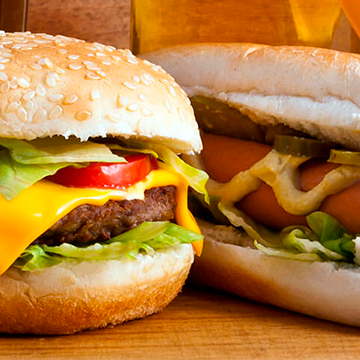 Logo Burger Dudes