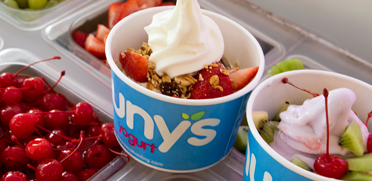 Logo Nunys Yogurt