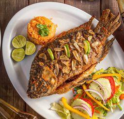 Baja Fish Taquito