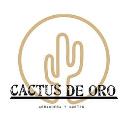 Cactus de Oro