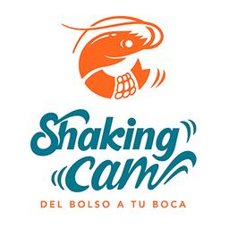 Shaking Cam