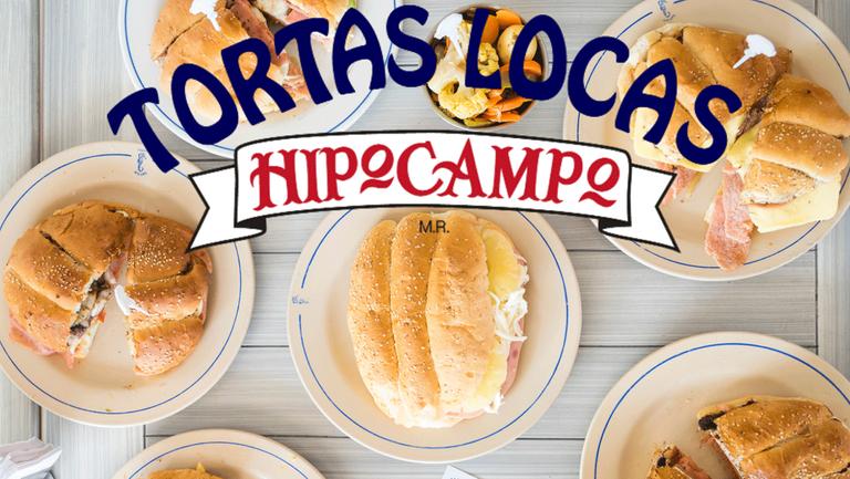 Logo Tortas Locas Hipocampo