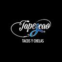 Tapezcao background