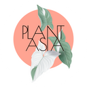 Plantasia background